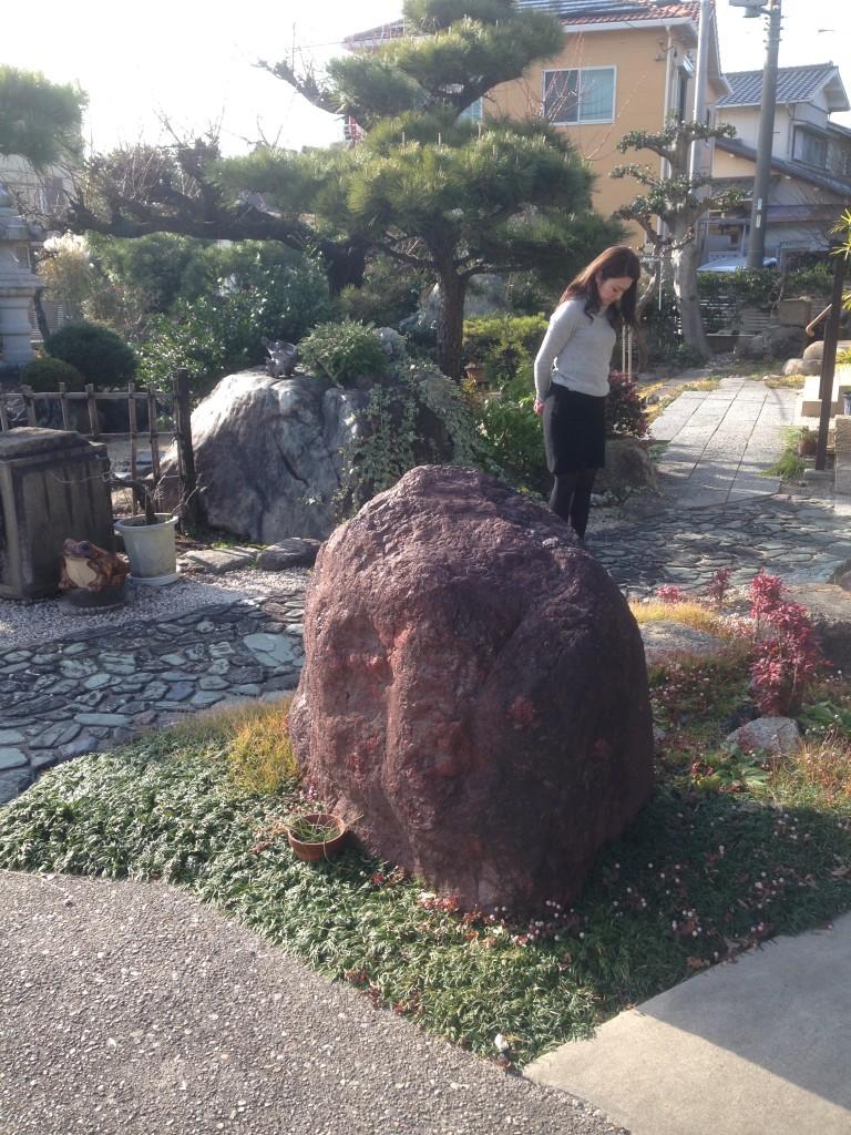 玉竜を使った庭