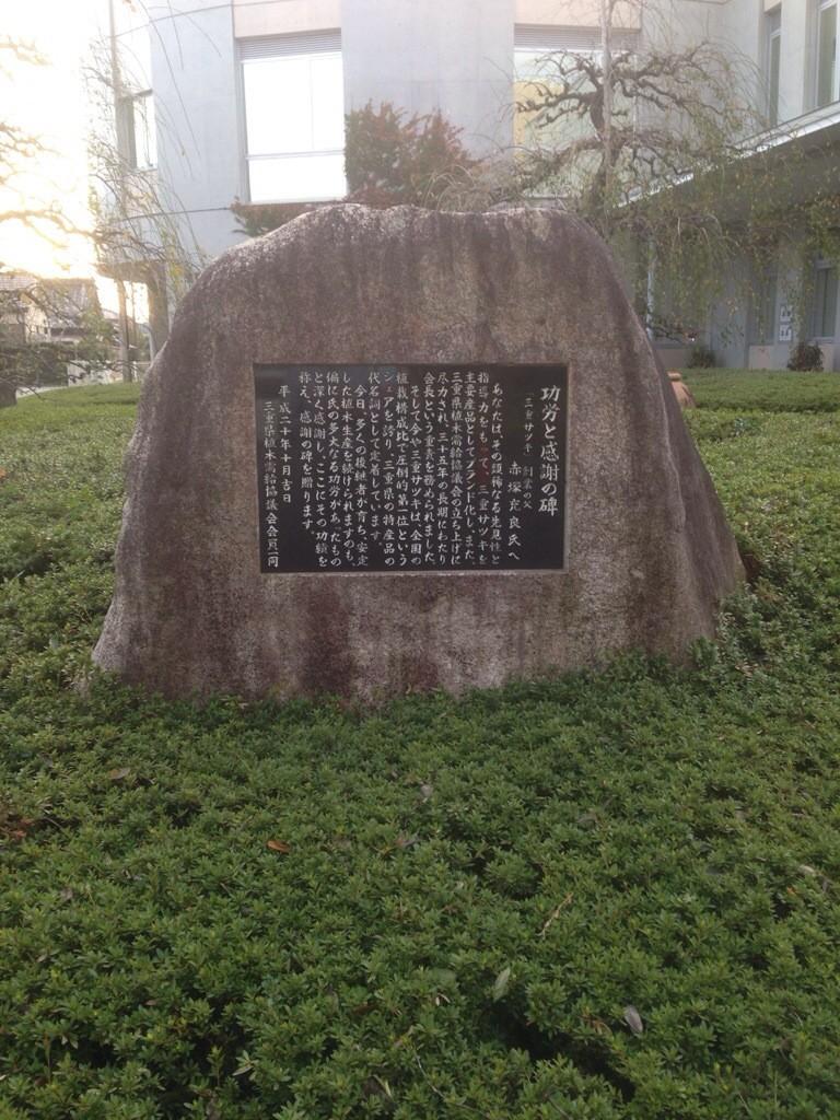 赤塚植物園のサツキ